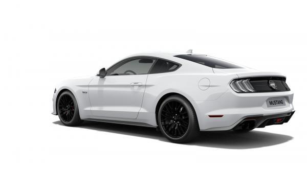 Profíci na konské sily - Americký V8